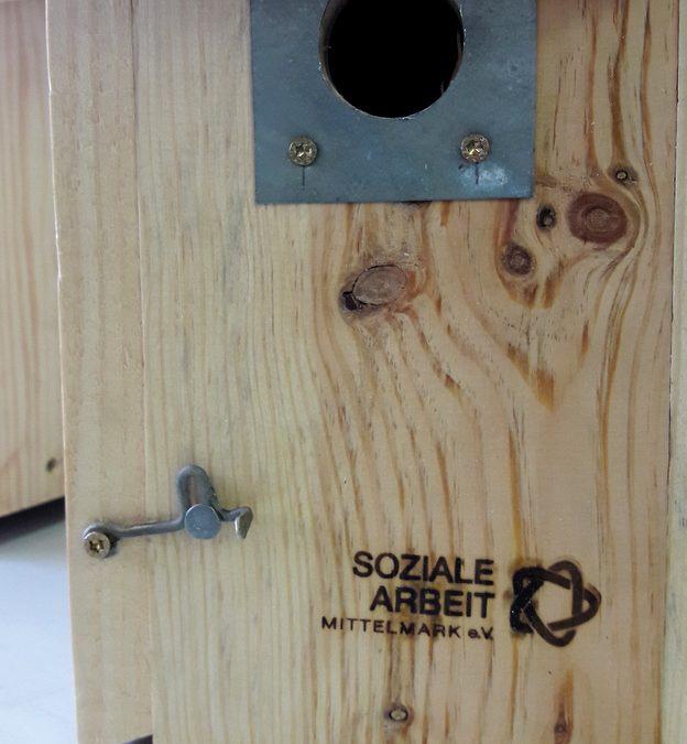 Neues Projekt: AGH Maßnahme Holzwerkstatt