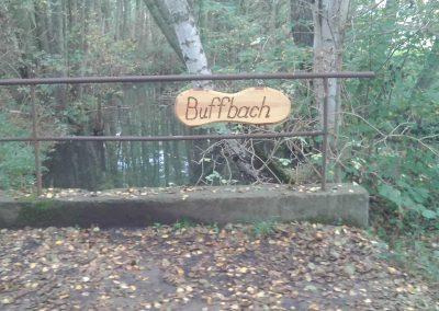 06-Buffbach1